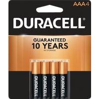 4Pk Aaa Alka Battery