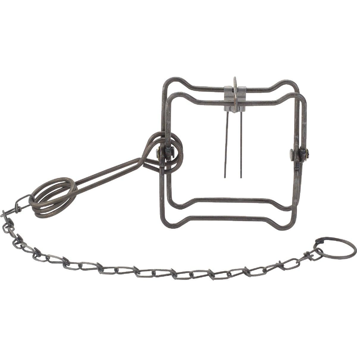 #110 Body Trap