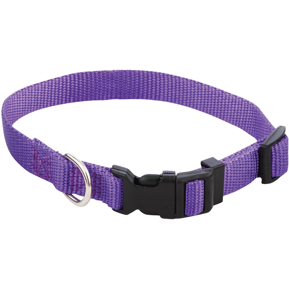 5/8X10-16 FASHION COLLAR