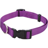 Westminster Pet 3/4X14-20 FASHION COLLAR 34142