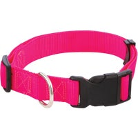 Westminster Pet 1X18-26 FASHION COLLAR 34143