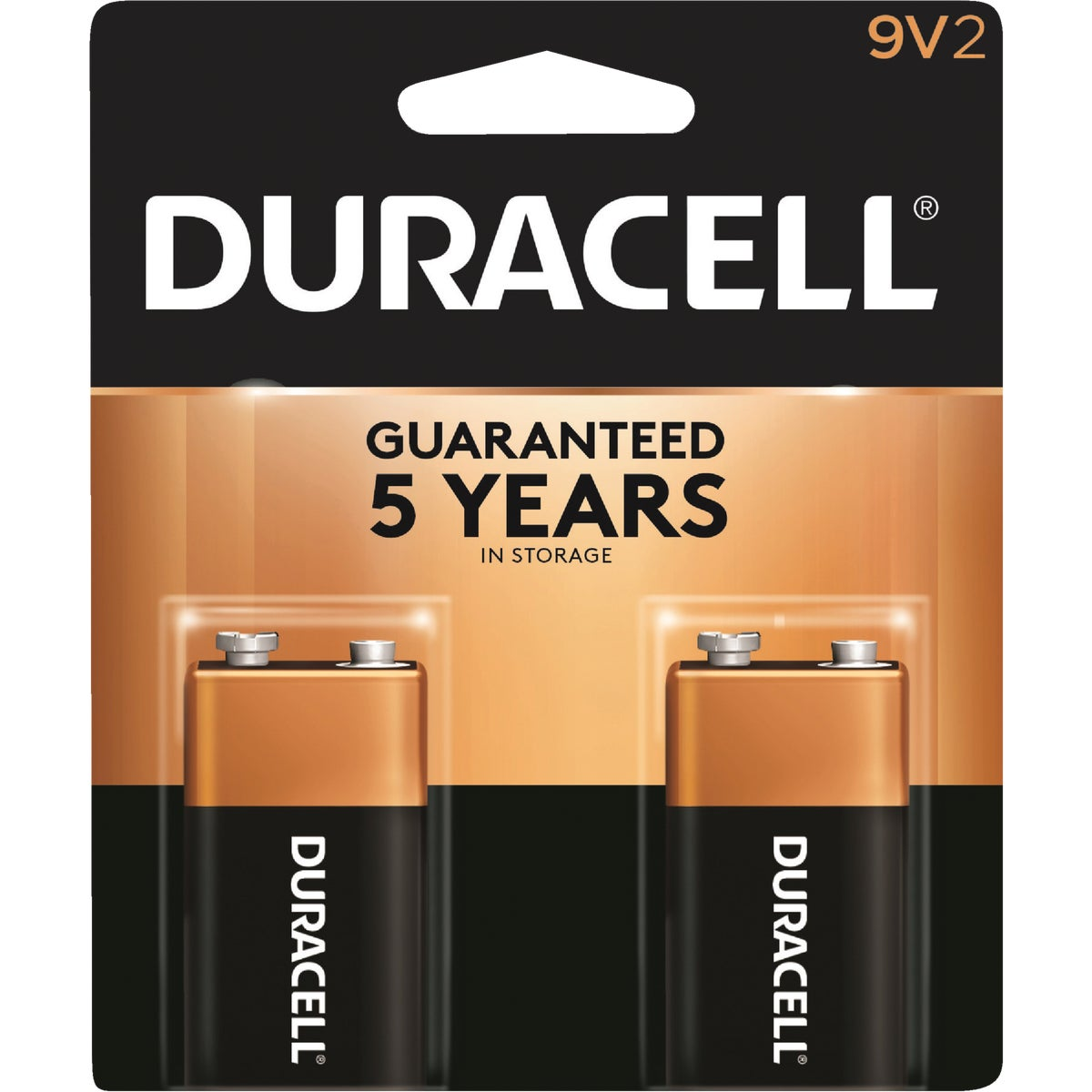 2PK 9V ALKALINE BATTERY - 03961 by P & G  Duracell