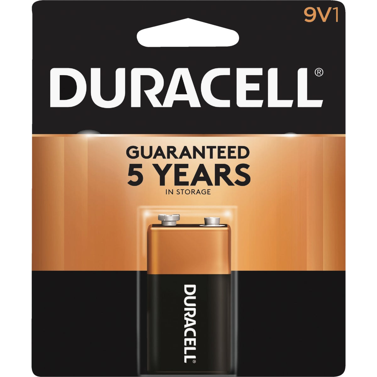 9V ALKALINE BATTERY - 09361 by P & G  Duracell