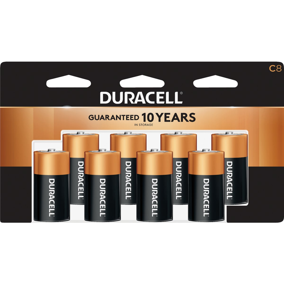 8PK C ALKALINE BATTERY