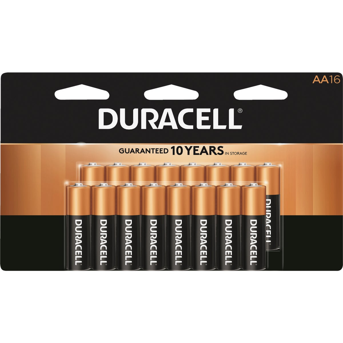 16PK AA ALKALINE BATTERY