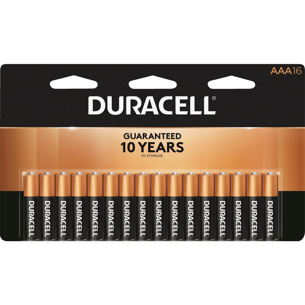 16PK AAA ALKALIN BATTERY - MN2400B16Z by P & G  Duracell