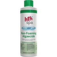 Arch Chemicals, Inc. PT SPA ALGAECIDE 86229