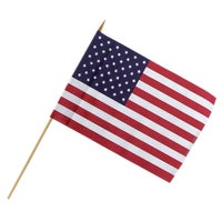 Valley Forge 48PK 12X18 DSP CUP FLAG USE12D