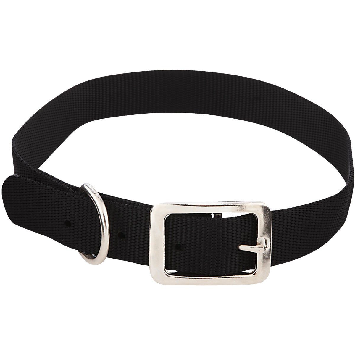 1X24 NYLON COLLAR - 31424 by Westminster Pet
