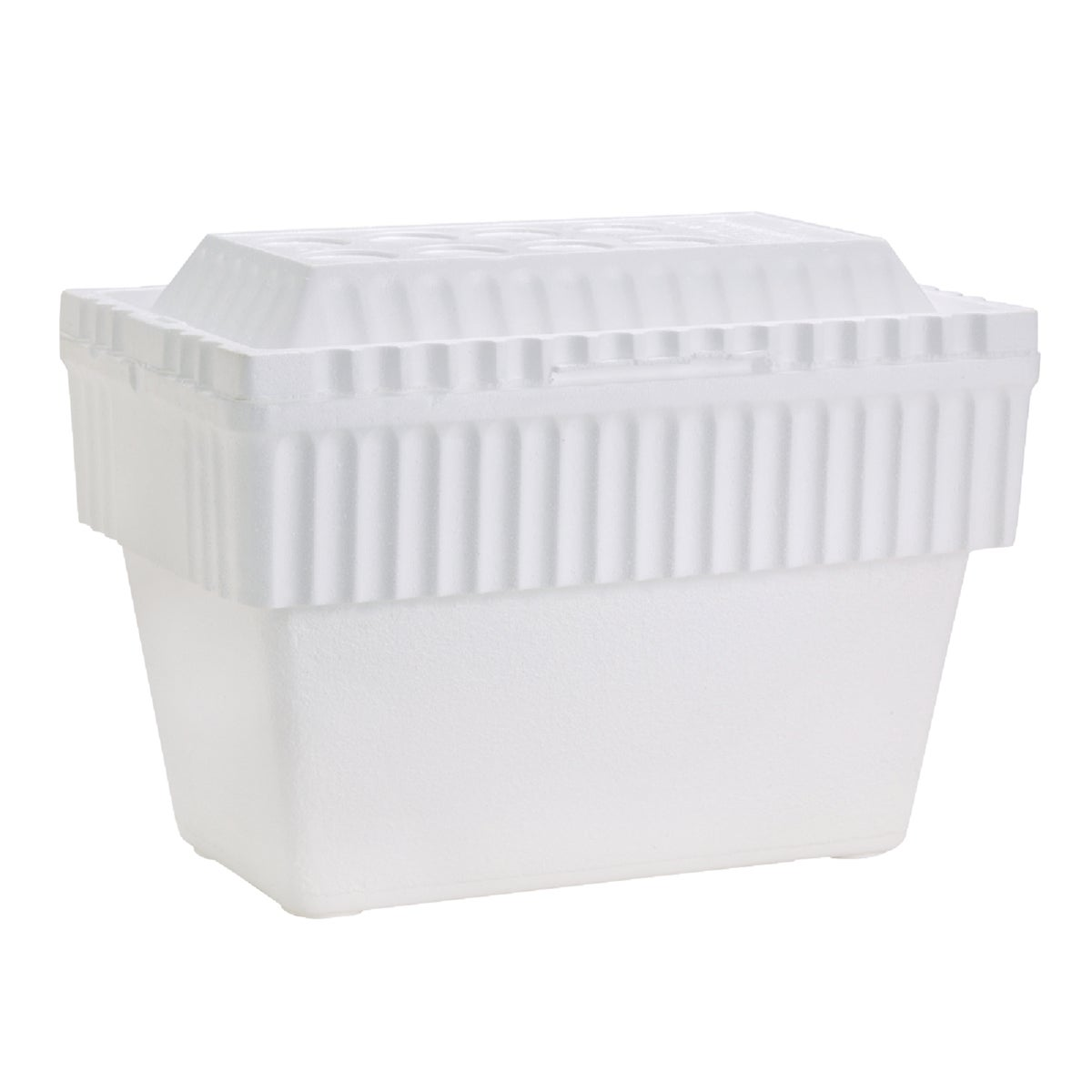 40QT FOAM COOLER