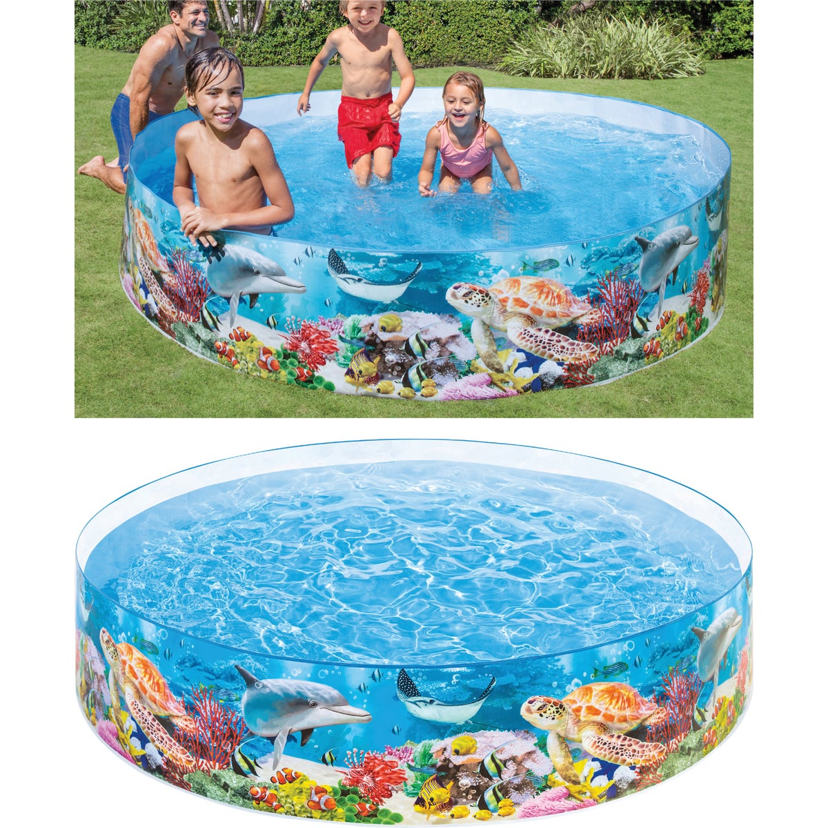 8X18SUNFISH SNAPSET POOL - 56453EP by Intex Recreation