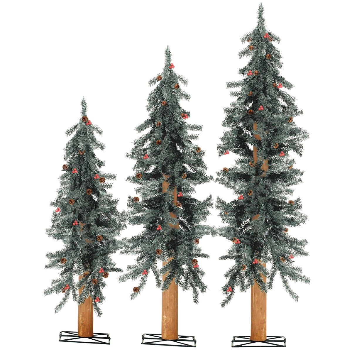 2-3-4 FT ALPINE TREES